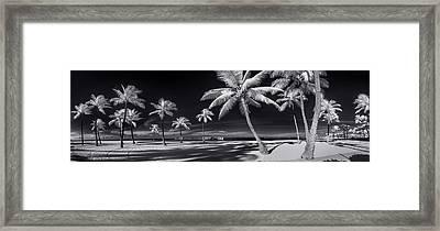 Empty Waikiki Beach Framed Print by Sean Davey
