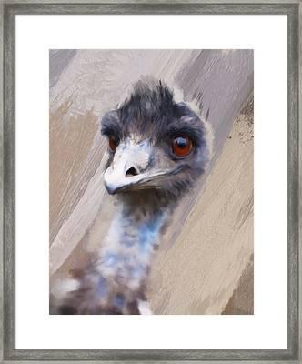 Emu Framed Print by Gillian Dernie