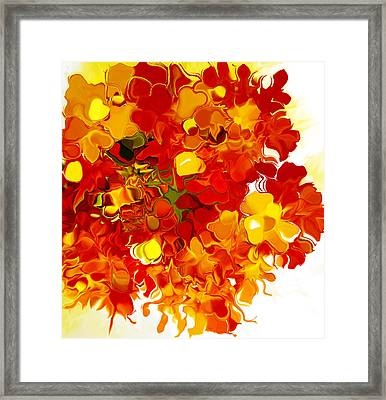 En Colere Evo Framed Print by Robert OP Parrish