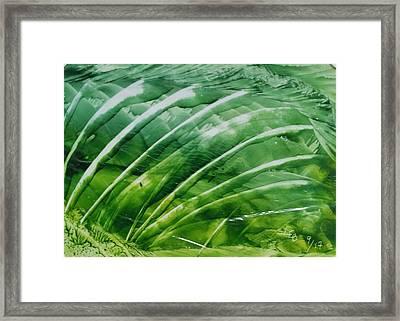 Encaustic Abstract Green Fan Foliage Framed Print
