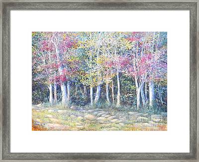 Enchanced Tree Pageant Framed Print by Penny Neimiller