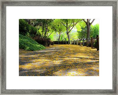 Enchanted Path Framed Print