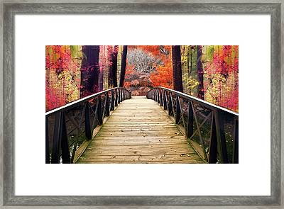Framed Print featuring the photograph Enchanted Crossing by Jessica Jenney