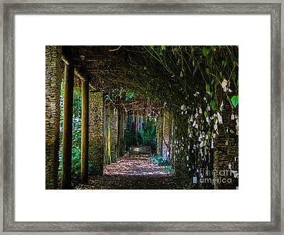 Enchanted Entrance Framed Print
