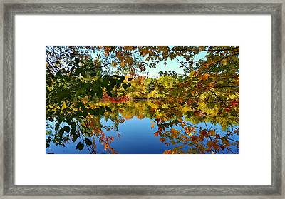 Framed Print featuring the photograph Enchanted Fall by Valentino Visentini