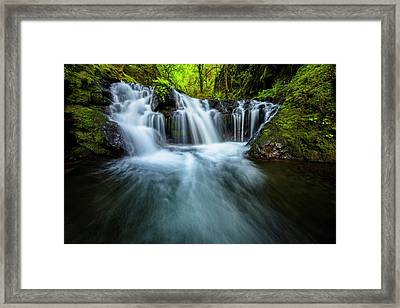 Enchanted Forest Framed Print by Mike Lang