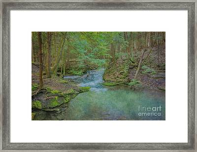 Framed Print featuring the digital art Enchanted Forest One by Randy Steele
