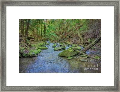 Framed Print featuring the digital art Enchanted Forest Three by Randy Steele