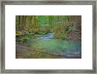 Framed Print featuring the digital art Enchanted Forest Two by Randy Steele