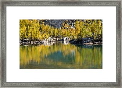 Framed Print featuring the photograph Enchanted Larches by Brian Bonham