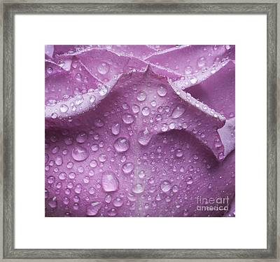 Framed Print featuring the photograph Enchanted by Michelle Wiarda