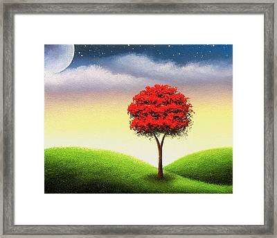 Enchanted Nights Framed Print by Rachel Bingaman