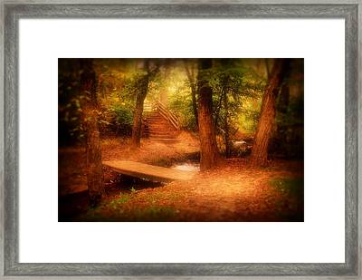 Enchanted Path - Allaire State Park Framed Print