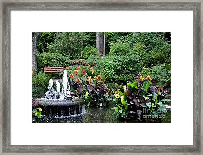 Enchanted Pond  3 Framed Print