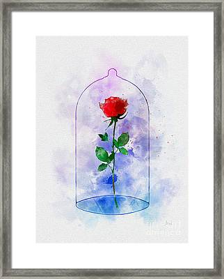 Enchanted Rose Framed Print
