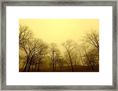 Enchanted Stand Framed Print