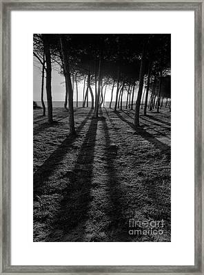 Enchanted Sunset In Monochrome Framed Print