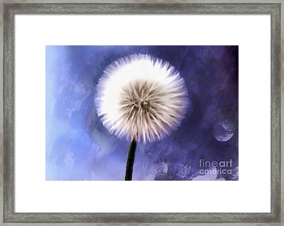 Enchanted Wish Framed Print by Krissy Katsimbras