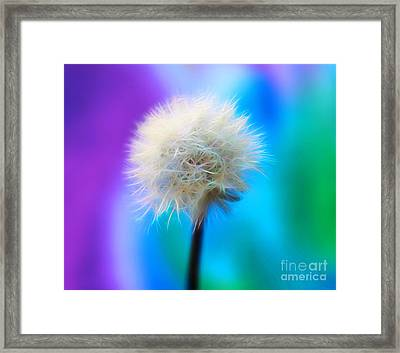 Enchanted Wishes Framed Print by Krissy Katsimbras