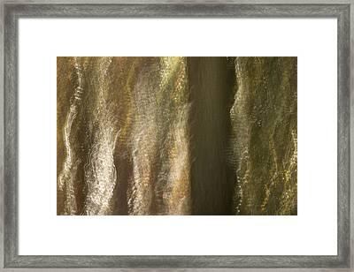 Enchanted Woods Framed Print
