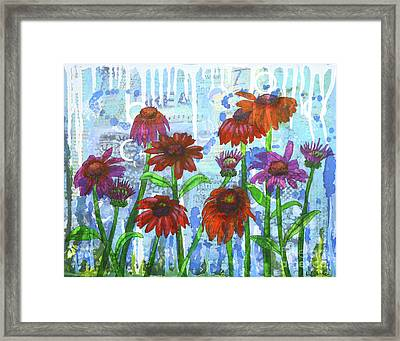 Enchanting Echinacea Framed Print