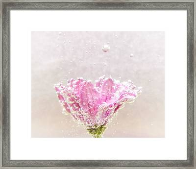 Enchanting Framed Print