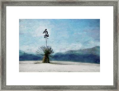 Enchantment Of The Yucca White Sands New Mexico Framed Print by Barbara Chichester