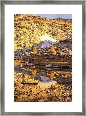 Enchantments Golden Light Larches Framed Print