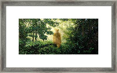 Encounter Framed Print by Paul Sierra