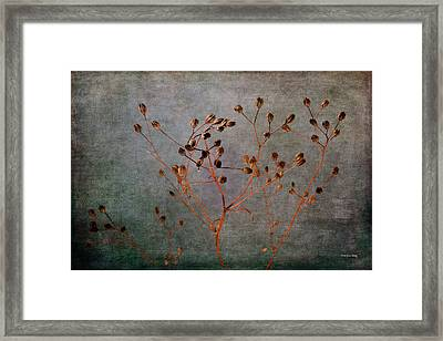 Framed Print featuring the photograph End And Beginning by Randi Grace Nilsberg