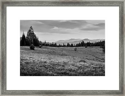 End Of Day In B W Framed Print by Frank Wilson