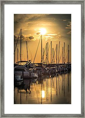 End Of Season Framed Print
