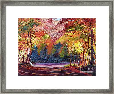 End Of The Road Framed Print by David Lloyd Glover
