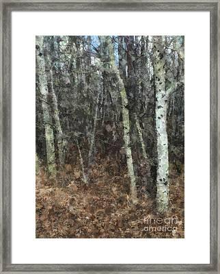 Endless Journey Framed Print
