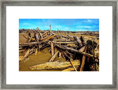Endless Piles Of Driftwood Framed Print by Garry Gay
