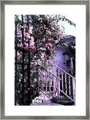 Endless Summer Framed Print by Susanne Van Hulst