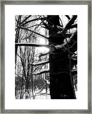 Endurance Framed Print by Douglas Pike
