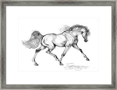 Endurance Horse Framed Print