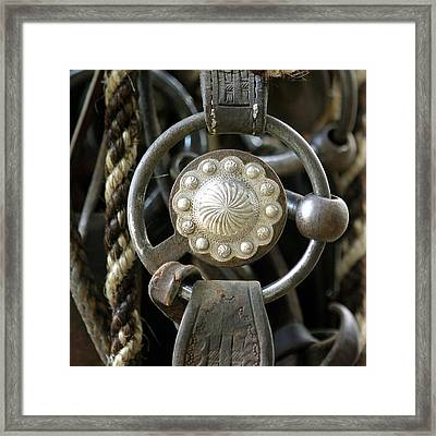 Endure The Test Of Time Framed Print by Diane Bohna