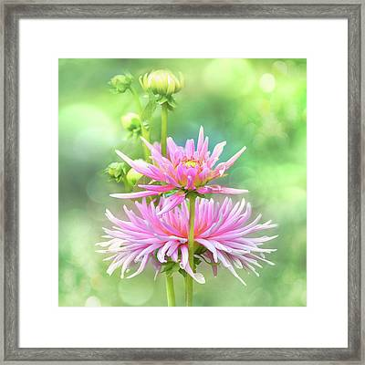 Framed Print featuring the photograph Enduring Grace by John Poon