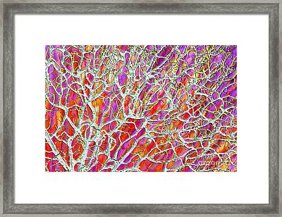 Energetic Abstract Framed Print by Carol Groenen