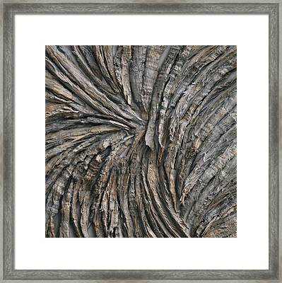 Engage Framed Print by Susie Frazier