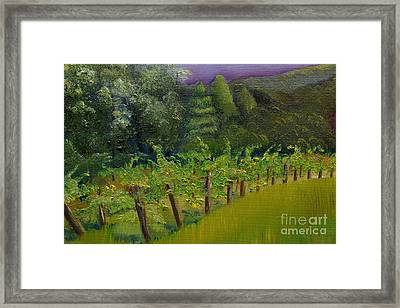 Engelheim Vineyard - Ellijay - Plein Air Oil Framed Print by Jan Dappen