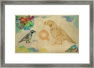 Framed Print featuring the drawing English Alphabet , Quail by Ariadna De Raadt