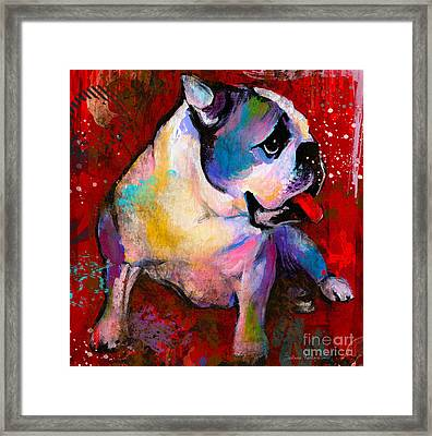 English American Pop Art Bulldog Print Painting Framed Print by Svetlana Novikova