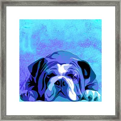 English Bulldog Animal Blue Decorative Wall Poster 3 - By Diana Van  Framed Print by Diana Van