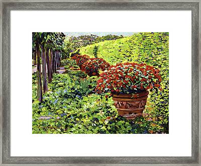 English Flower Pots Framed Print by David Lloyd Glover
