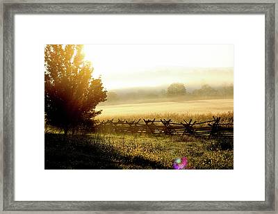 English Morning Framed Print