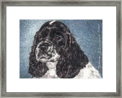 English Springer Spaniel Annie Framed Print by Melissa J Szymanski