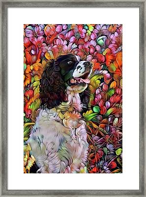 English Springer Spaniel In The Garden Framed Print